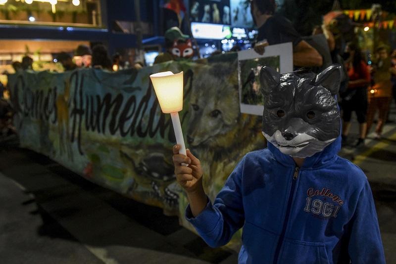 Marcha de antorchas en Rosario para exigir la Ley de Humedales.
