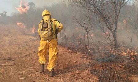 incendios en el norte de córdoba